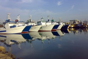 ميناء الصيد البحري بصفاقس