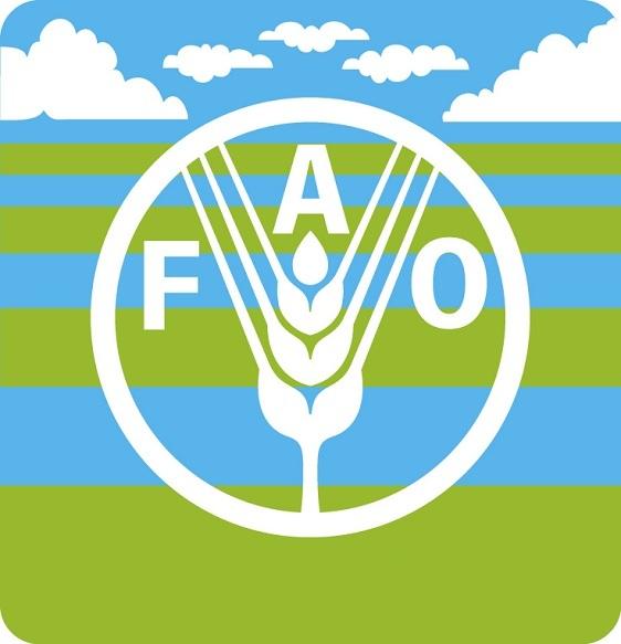 """منظمة الأغذية والزراعة للأمم المتحدة """"الفاو"""""""