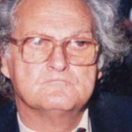 مصطفى الفارسي