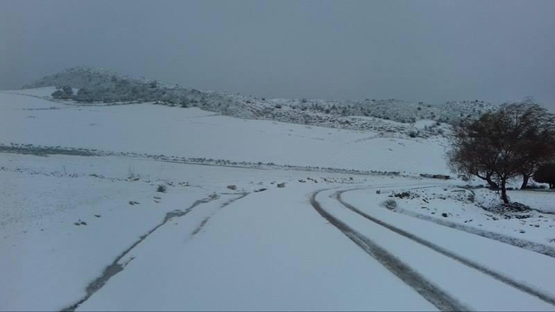 تتساقط الثلوج في بنزرت