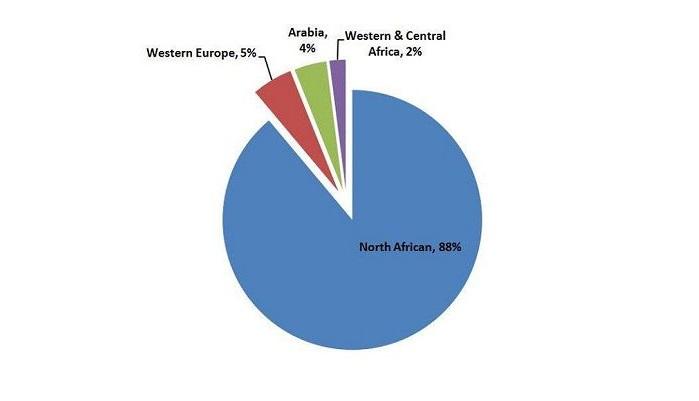 ناشيونال جيوغرافيك : 4% فقط من التونسيين من أصول عربية