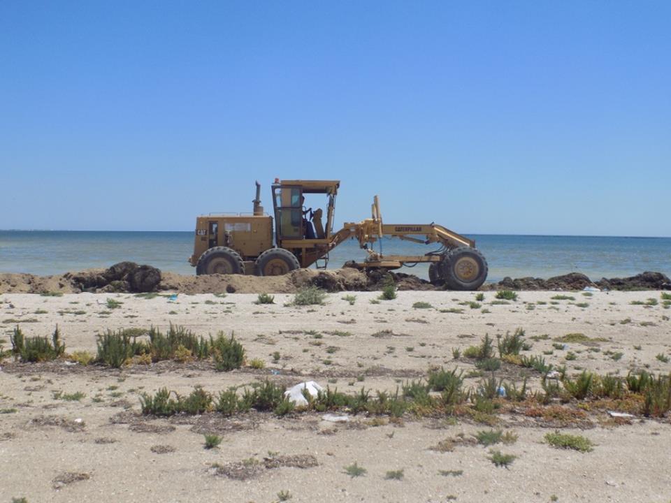 صفاقس - تنظيف شاطئ تبرورة