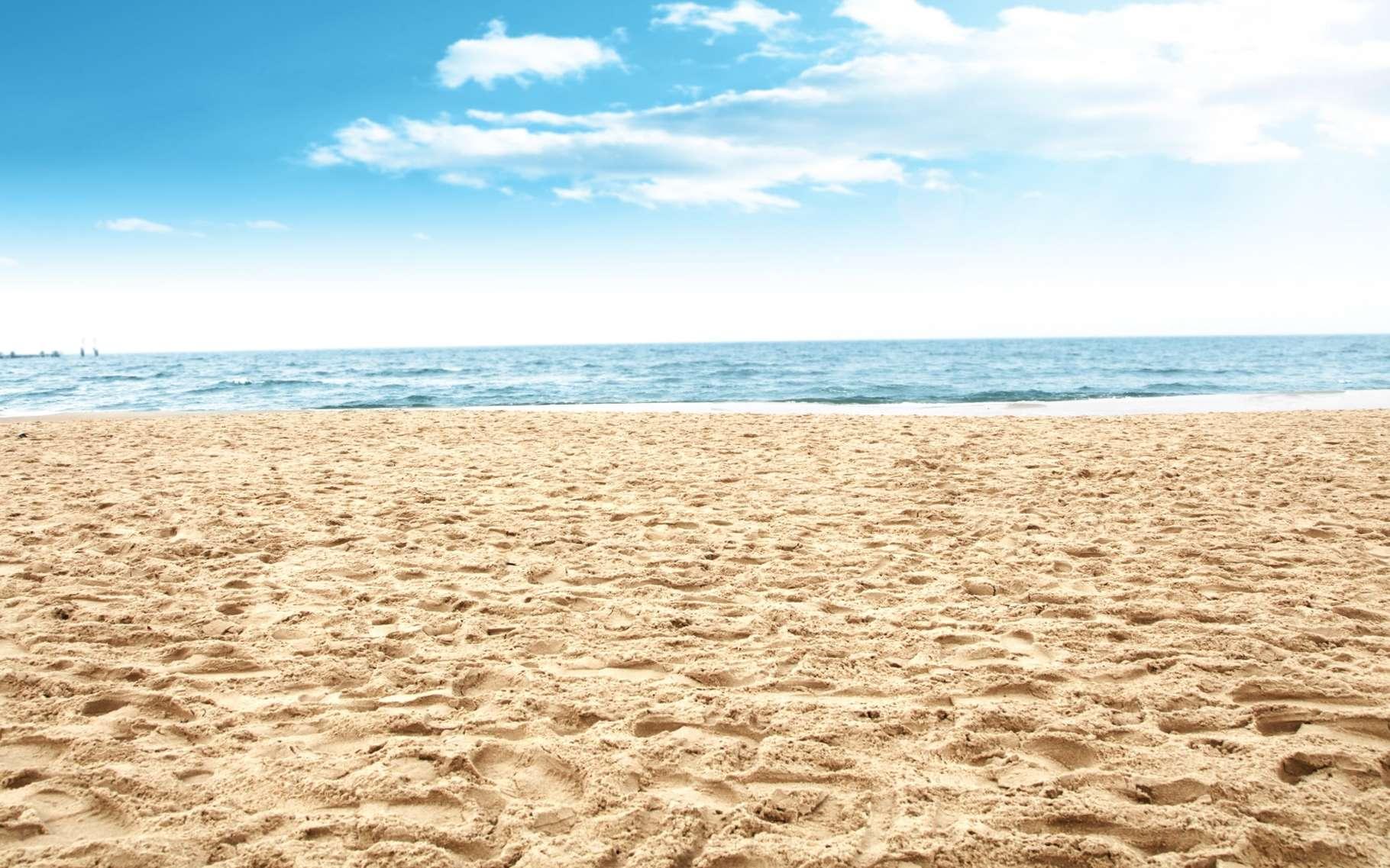 شاطئ - بحر