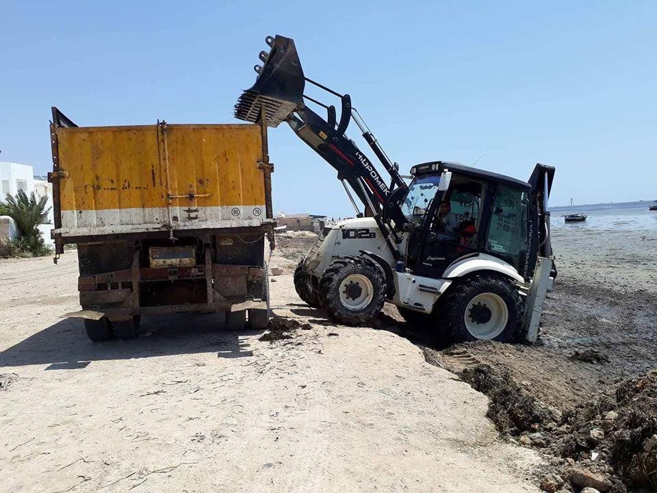 """صفاقس : تنظيف شواطئ سيدي منصور من """"الضريع"""""""