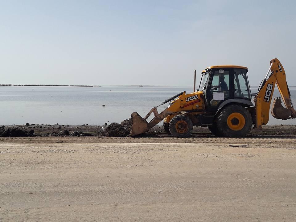 حملة نظافة في جزيرة قرقنة