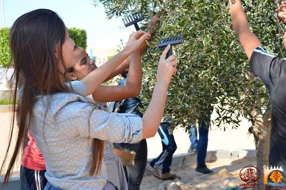 نادي ليو صفاقس المتوسطي يقوم بنشاط داخل مدرسة الصداقة حول موسم جني الزيتون