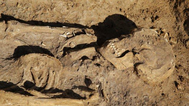 جثة آدمية - هيكل عظمي